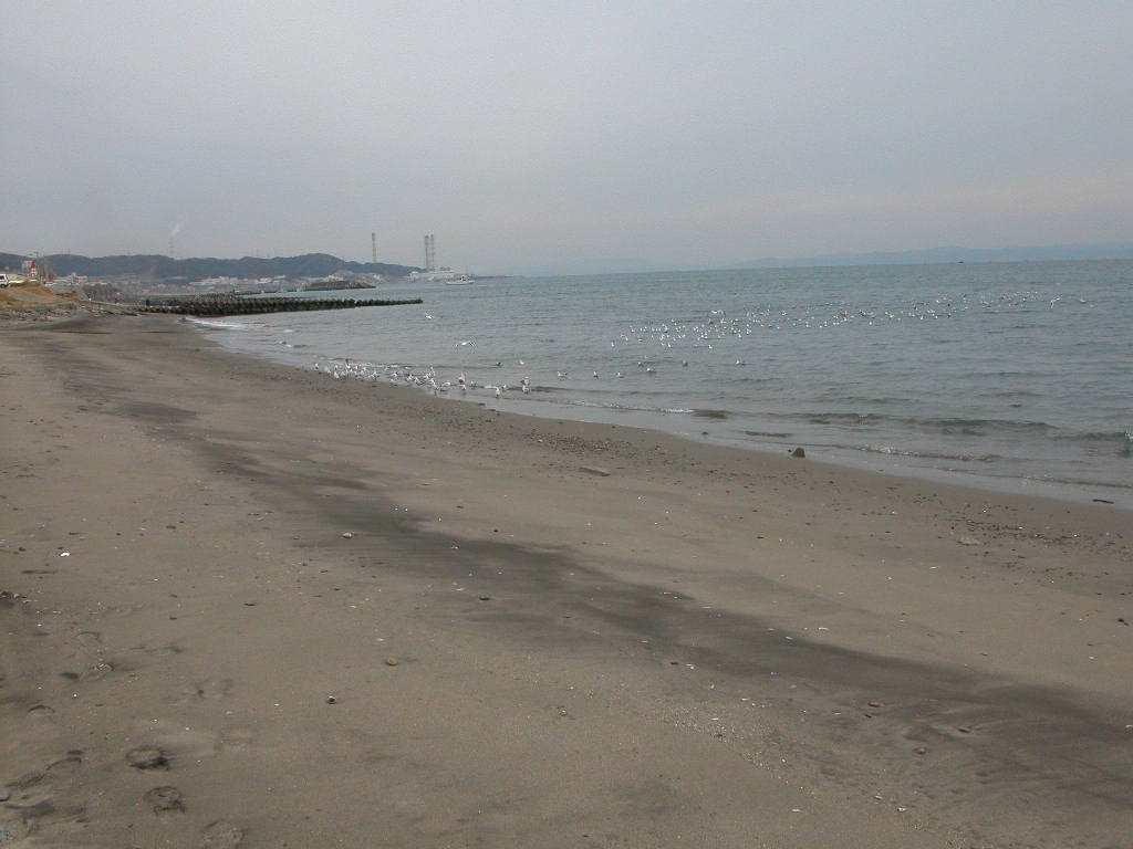 三浦半島の海岸 三浦半島の山・川・公園/ 三浦半島のウォーキング/ 三浦半島の海岸/ 相模湾を前